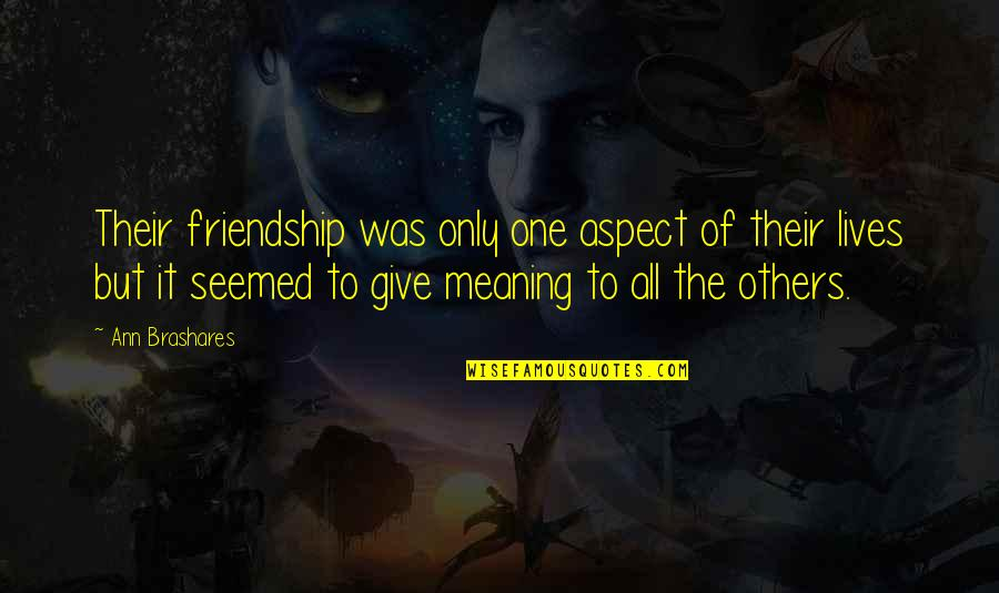 Only Friendship Quotes By Ann Brashares: Their friendship was only one aspect of their