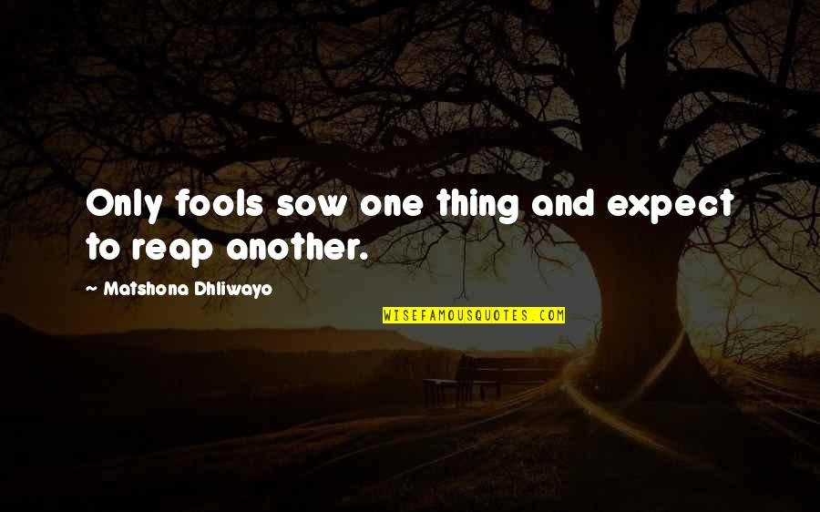 Only One Quotes And Quotes By Matshona Dhliwayo: Only fools sow one thing and expect to