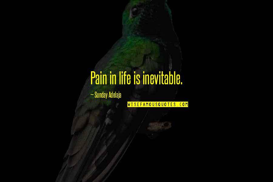 Only You Can Control Your Happiness Quotes By Sunday Adelaja: Pain in life is inevitable.