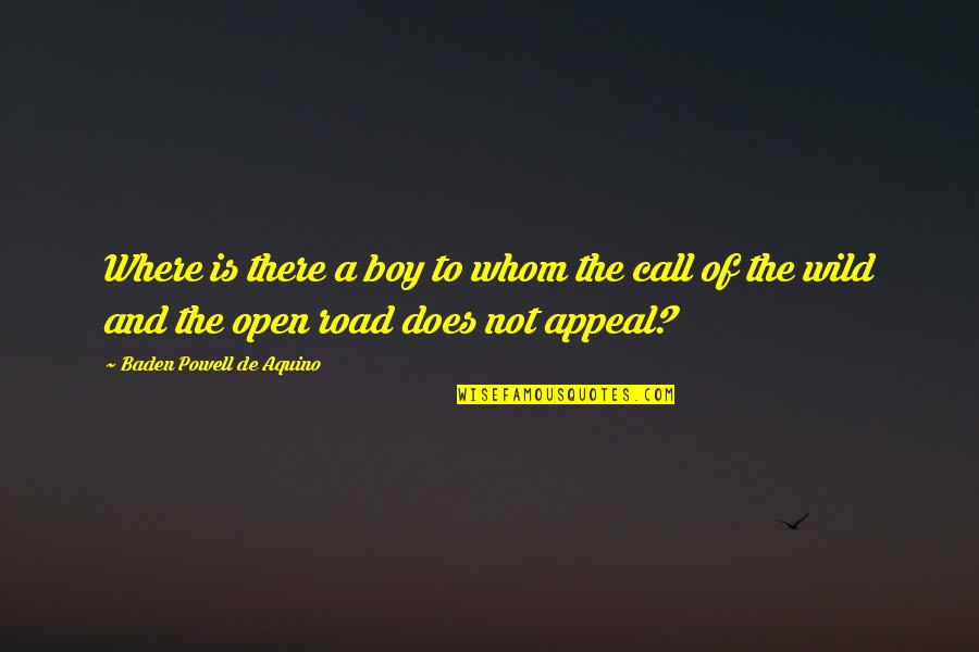 Open Road Quotes By Baden Powell De Aquino: Where is there a boy to whom the