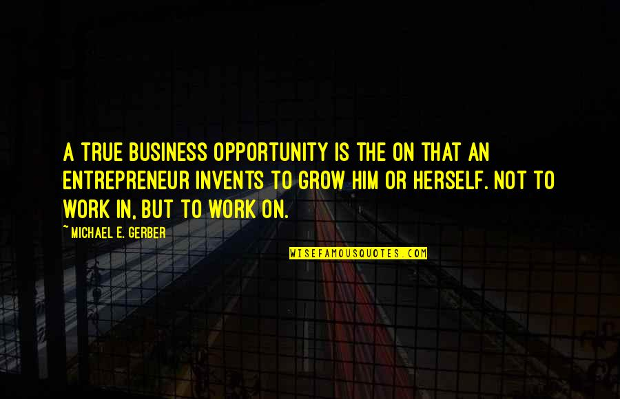 Opportunity In Business Quotes By Michael E. Gerber: A true business opportunity is the on that