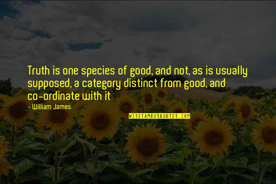 Ordinate Quotes By William James: Truth is one species of good, and not,