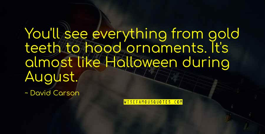 Ornaments Quotes By David Carson: You'll see everything from gold teeth to hood