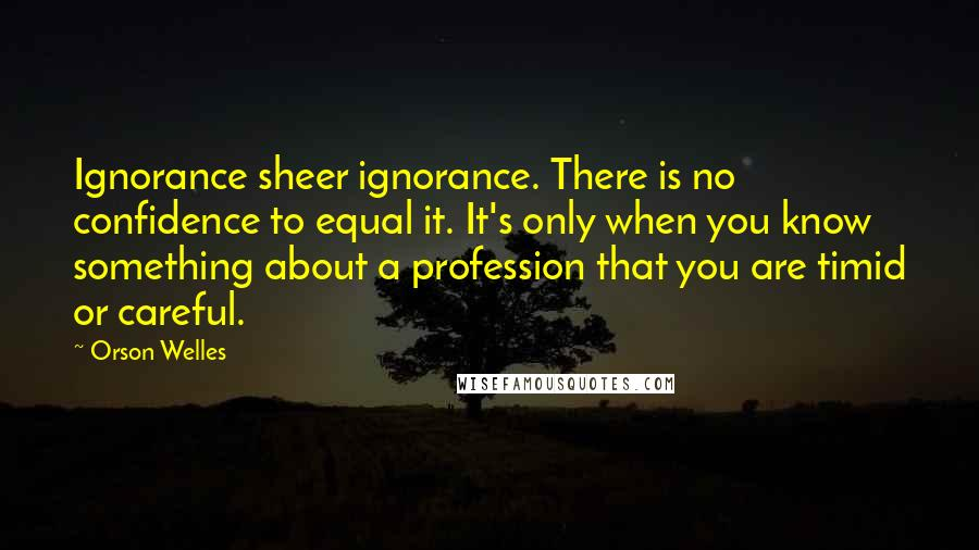 Orson Welles quotes: Ignorance sheer ignorance. There is no confidence to equal it. It's only when you know something about a profession that you are timid or careful.