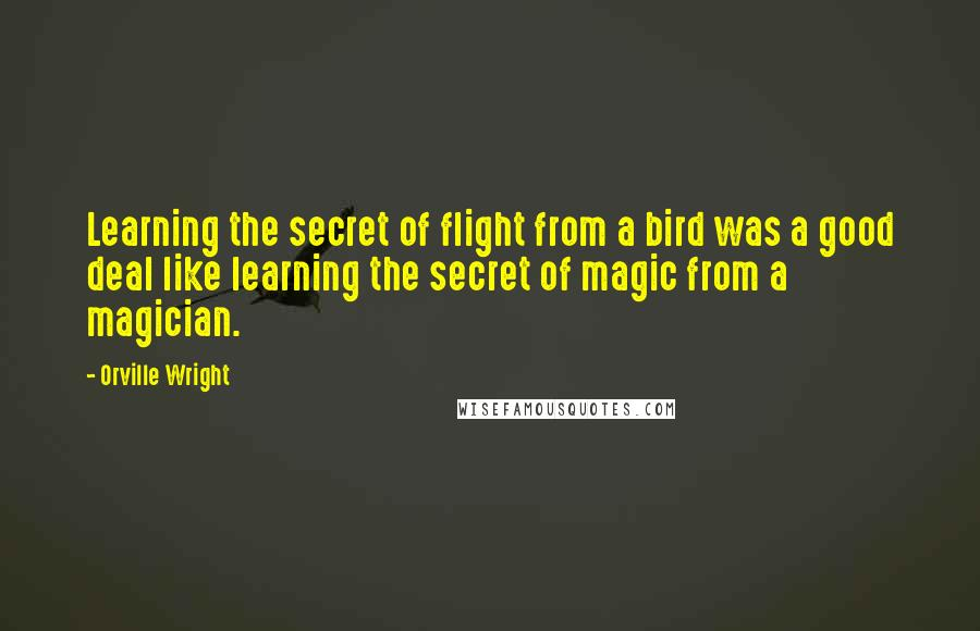 Orville Wright quotes: Learning the secret of flight from a bird was a good deal like learning the secret of magic from a magician.
