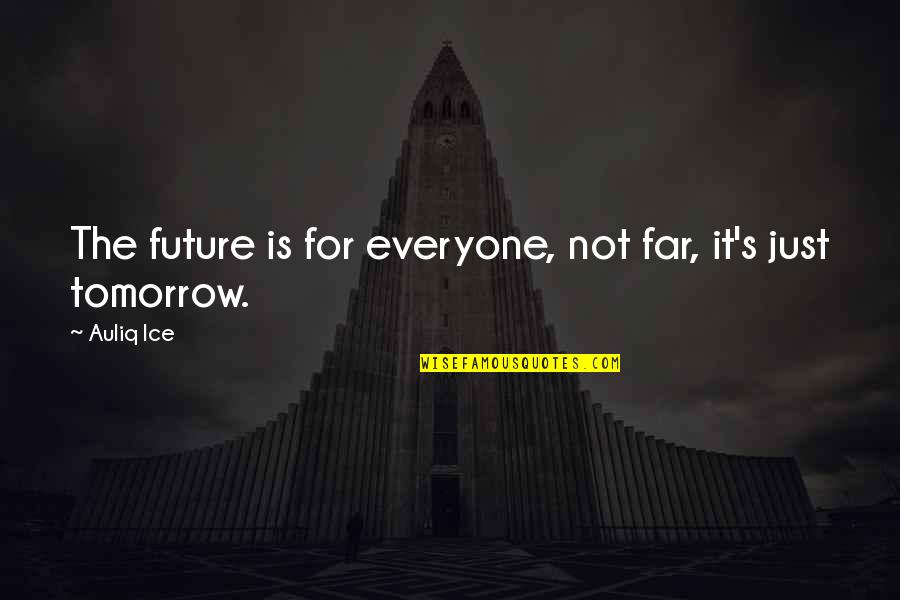 Our Future Generation Quotes By Auliq Ice: The future is for everyone, not far, it's