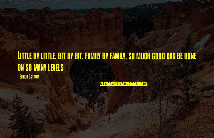 Our Little Family Quotes By Elinor Ostrom: Little by little, bit by bit, family by