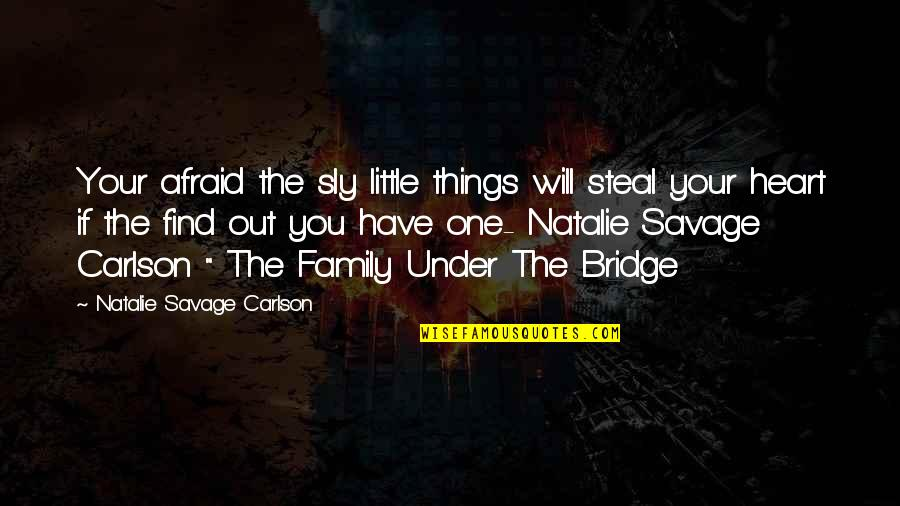 Our Little Family Quotes By Natalie Savage Carlson: Your afraid the sly little things will steal