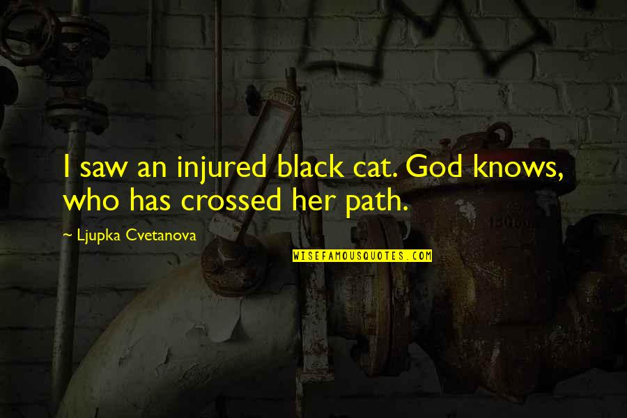 Our Paths Cross Quotes By Ljupka Cvetanova: I saw an injured black cat. God knows,