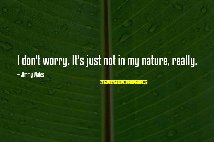 Our Sweet Moments Quotes By Jimmy Wales: I don't worry. It's just not in my