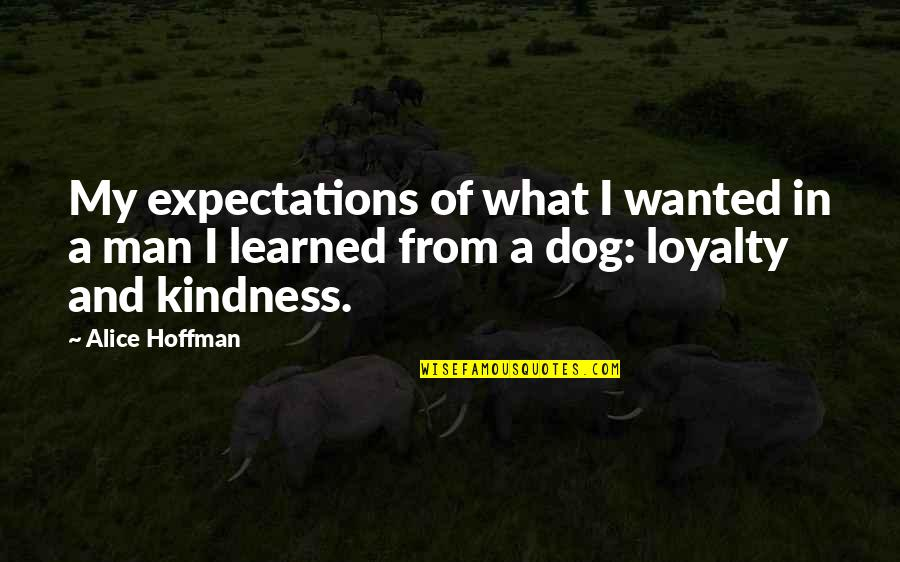 Over Expectations Quotes By Alice Hoffman: My expectations of what I wanted in a