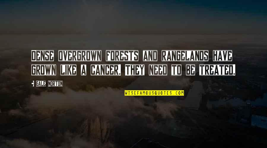 Overgrown Quotes By Gale Norton: Dense overgrown forests and rangelands have grown like