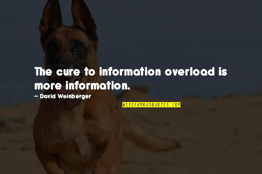 Overload Quotes By David Weinberger: The cure to information overload is more information.