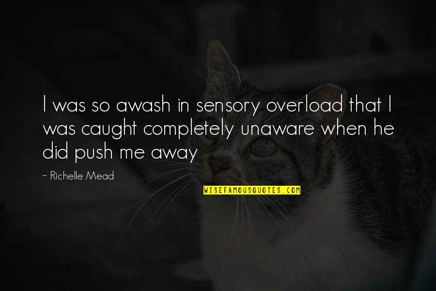 Overload Quotes By Richelle Mead: I was so awash in sensory overload that