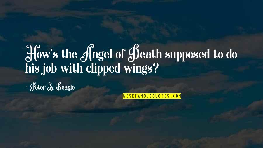 Overpunishes Quotes By Peter S. Beagle: How's the Angel of Death supposed to do