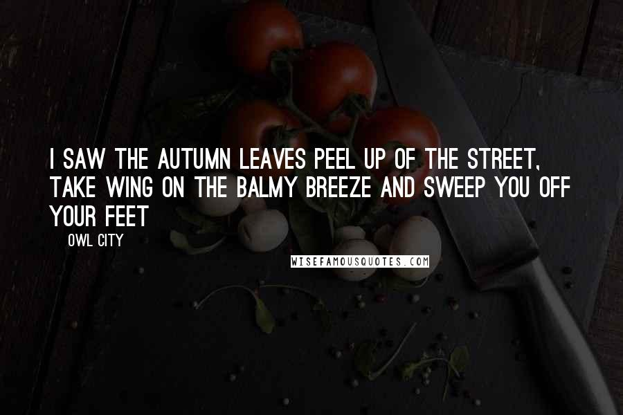 Owl City quotes: I saw the autumn leaves peel up of the street, Take wing on the balmy breeze and sweep you off your feet