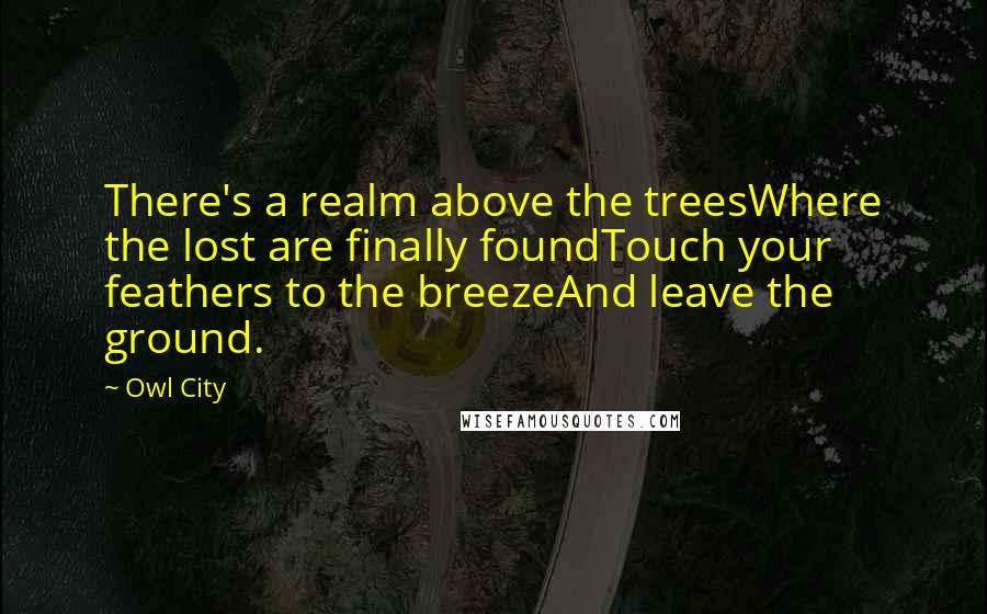Owl City quotes: There's a realm above the treesWhere the lost are finally foundTouch your feathers to the breezeAnd leave the ground.