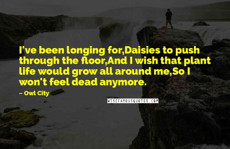 Owl City quotes: I've been longing for,Daisies to push through the floor,And I wish that plant life would grow all around me,So I won't feel dead anymore.