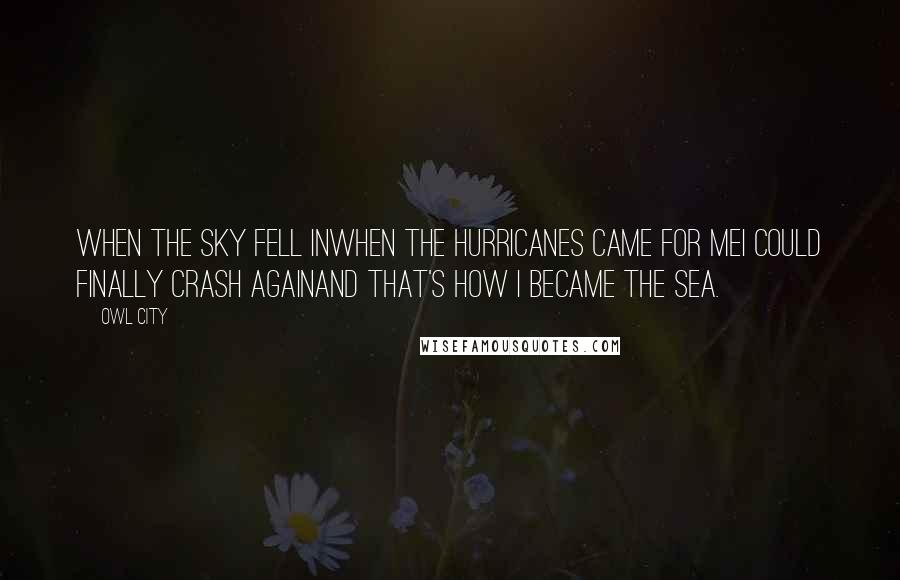 Owl City quotes: When the sky fell inWhen the hurricanes came for meI could finally crash againAnd that's how I became the sea.