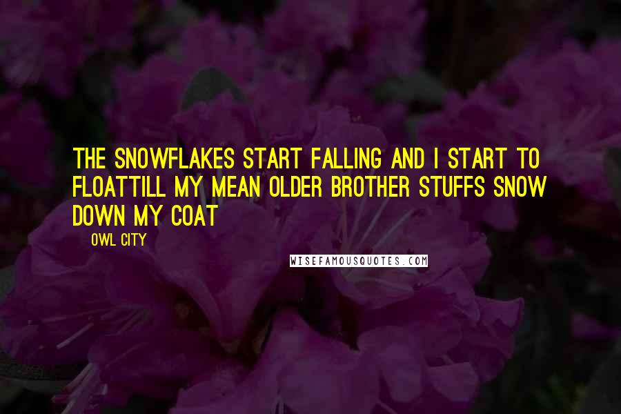 Owl City quotes: The snowflakes start falling and I start to floatTill my mean older brother stuffs snow down my coat