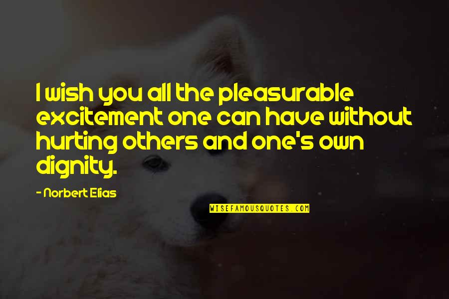Own Quotes By Norbert Elias: I wish you all the pleasurable excitement one