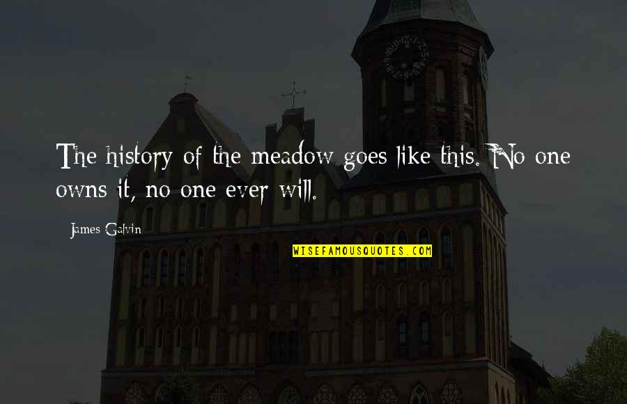 Owns Quotes By James Galvin: The history of the meadow goes like this.