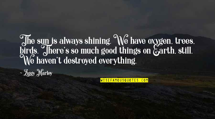 Oxygen's Quotes By Ziggy Marley: The sun is always shining. We have oxygen,