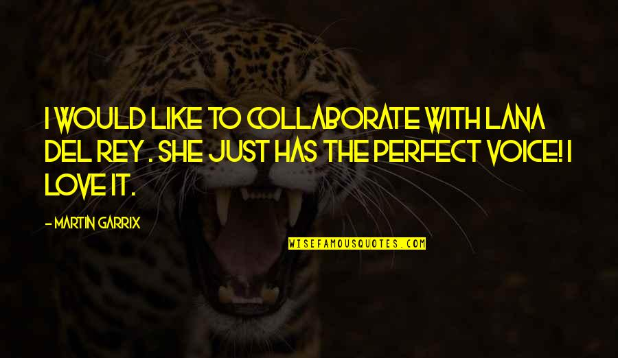 Ozera Quotes By Martin Garrix: I would like to collaborate with Lana Del