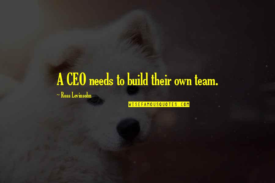 P&g Ceo Quotes By Ross Levinsohn: A CEO needs to build their own team.