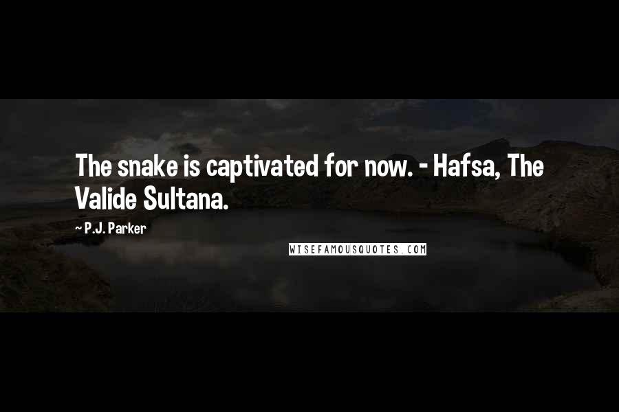 P.J. Parker quotes: The snake is captivated for now. - Hafsa, The Valide Sultana.