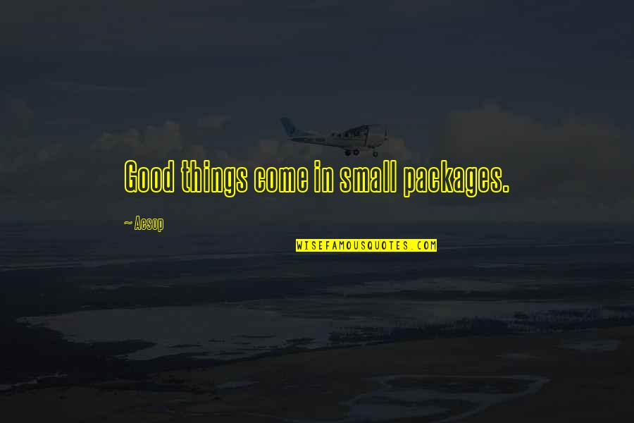 Packages Quotes By Aesop: Good things come in small packages.