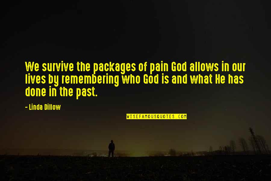 Packages Quotes By Linda Dillow: We survive the packages of pain God allows