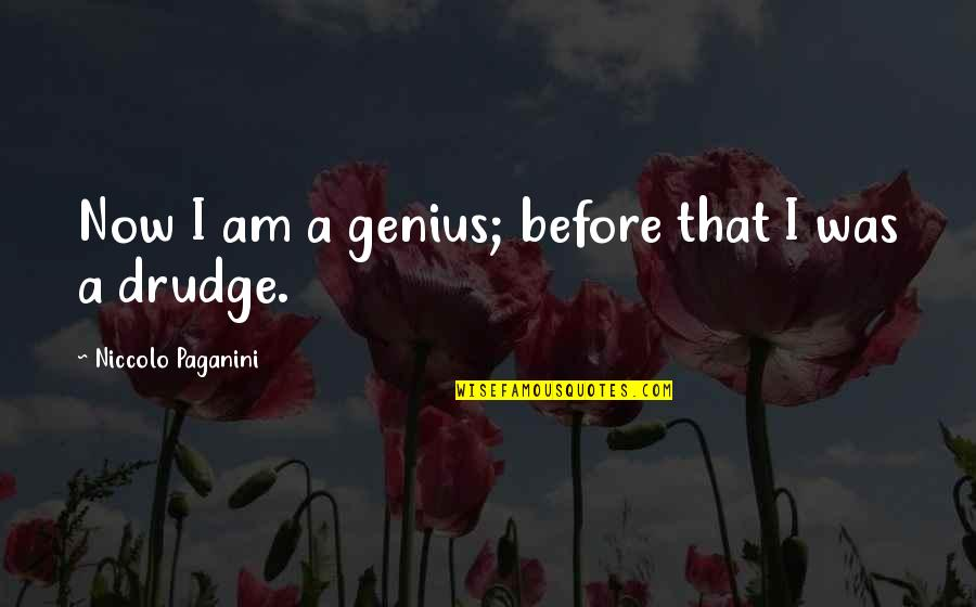 Paganini Quotes By Niccolo Paganini: Now I am a genius; before that I