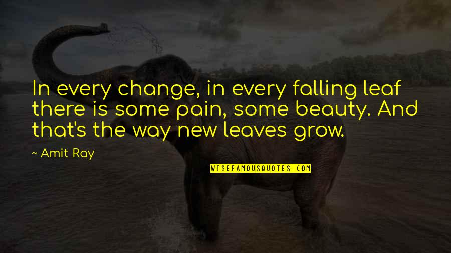 Pain And Beauty Quotes By Amit Ray: In every change, in every falling leaf there