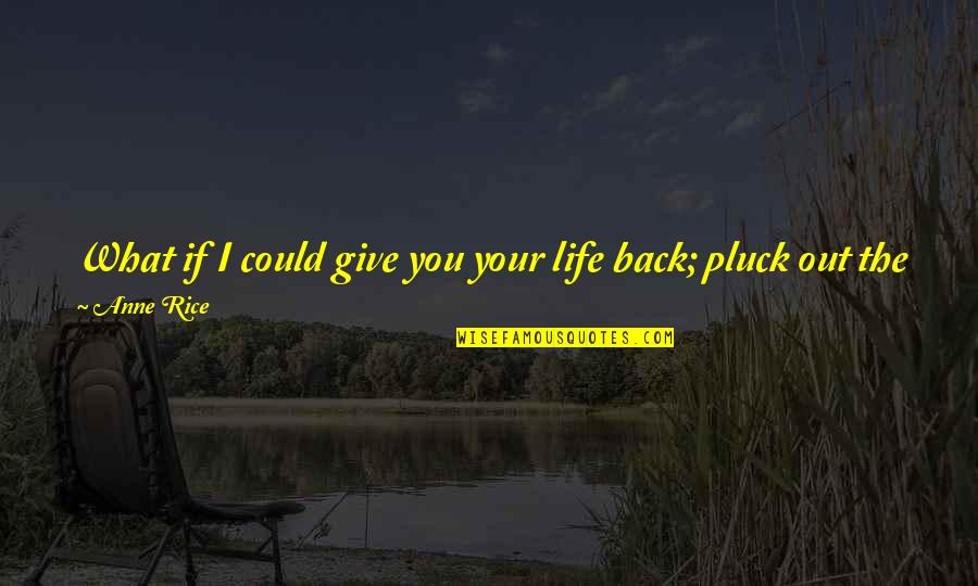 Pain And Beauty Quotes By Anne Rice: What if I could give you your life