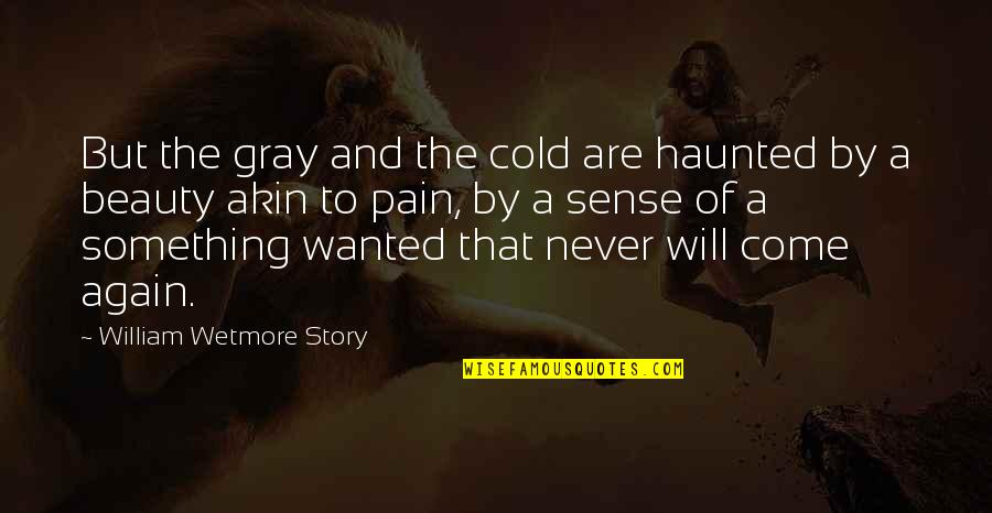 Pain And Beauty Quotes By William Wetmore Story: But the gray and the cold are haunted