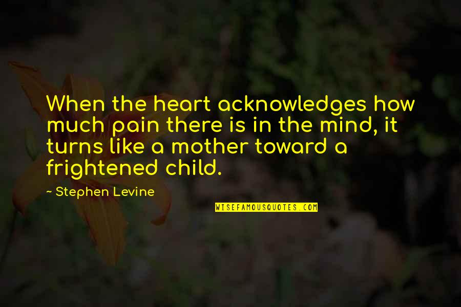 Pain In Your Heart Quotes By Stephen Levine: When the heart acknowledges how much pain there
