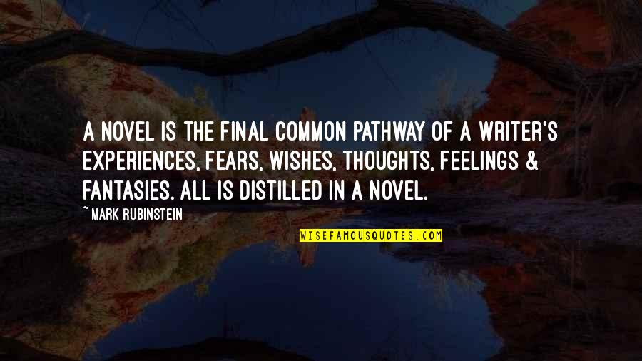 Painful Words Quotes By Mark Rubinstein: A novel is the final common pathway of