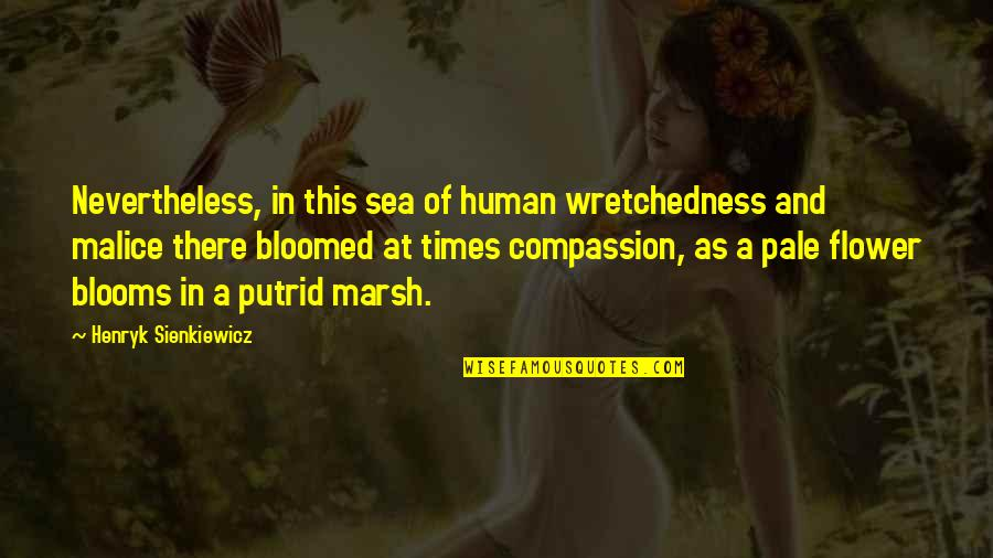 Pale Quotes By Henryk Sienkiewicz: Nevertheless, in this sea of human wretchedness and