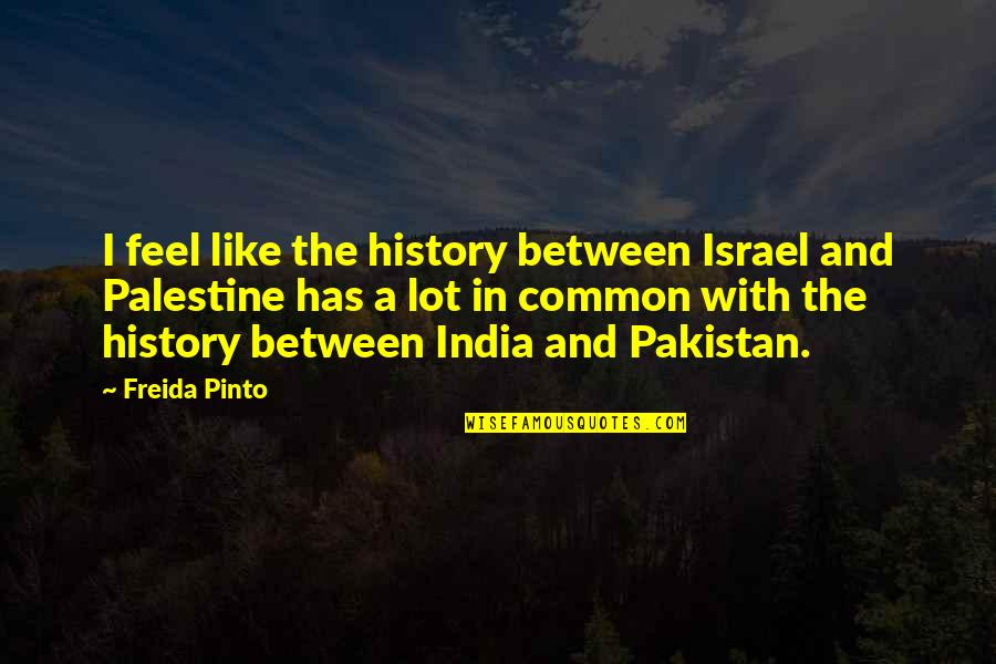 Palestine Quotes By Freida Pinto: I feel like the history between Israel and