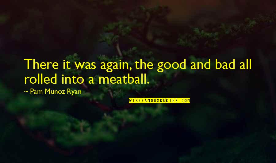 Pam Beaufort Quotes By Pam Munoz Ryan: There it was again, the good and bad