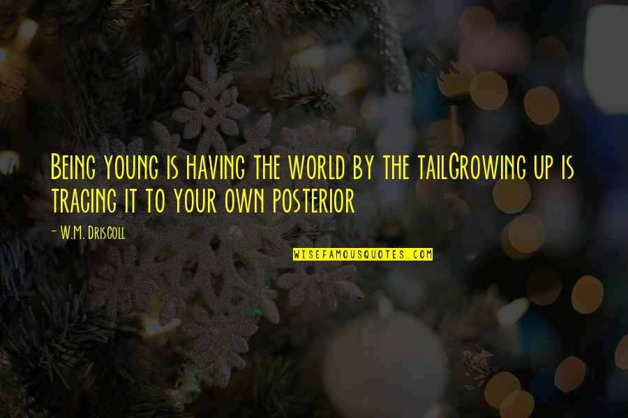 Pandered Quotes By W.M. Driscoll: Being young is having the world by the