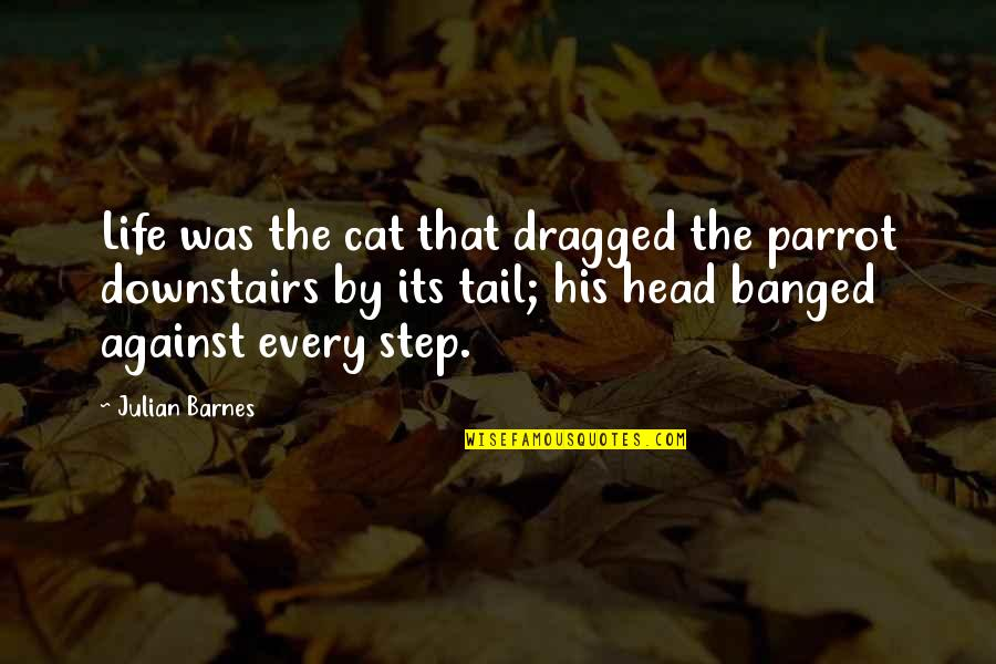 Parents To Son Birthday Quotes By Julian Barnes: Life was the cat that dragged the parrot