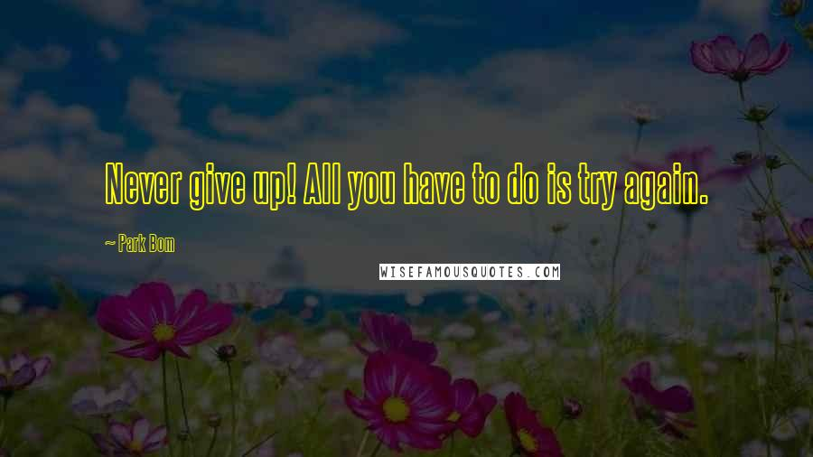 Park Bom quotes: Never give up! All you have to do is try again.