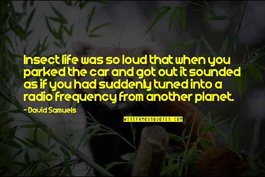 Parked Car Quotes By David Samuels: Insect life was so loud that when you