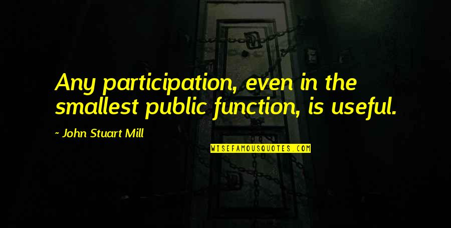 Participation In Government Quotes By John Stuart Mill: Any participation, even in the smallest public function,