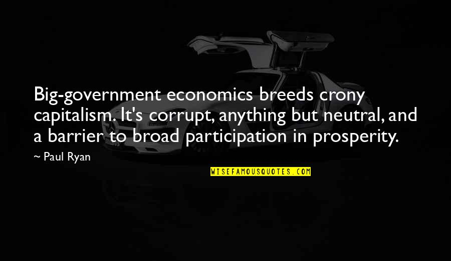 Participation In Government Quotes By Paul Ryan: Big-government economics breeds crony capitalism. It's corrupt, anything