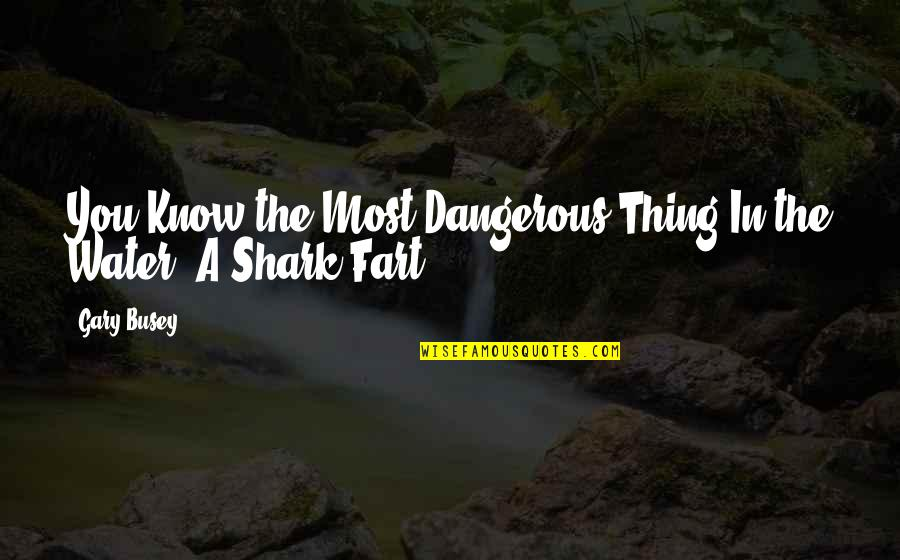 Passend Onderwijs Quotes By Gary Busey: You Know the Most Dangerous Thing In the
