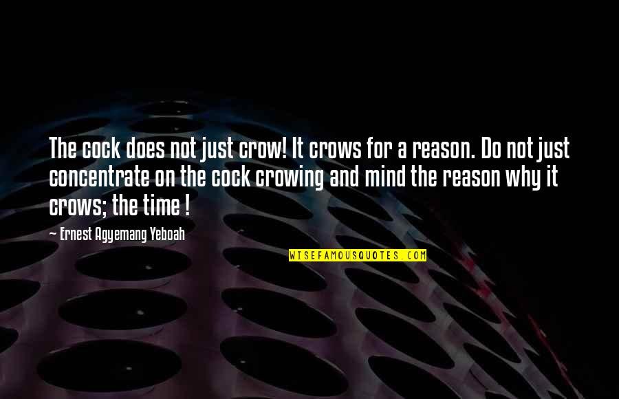 Passing It On Quotes By Ernest Agyemang Yeboah: The cock does not just crow! It crows