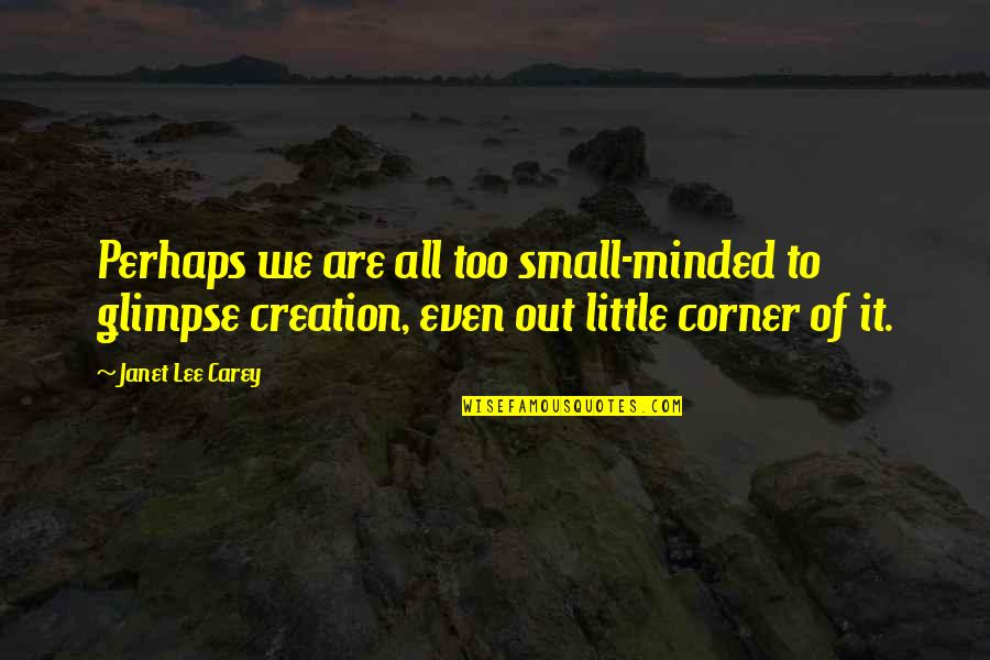 Passing Nclex Quotes By Janet Lee Carey: Perhaps we are all too small-minded to glimpse